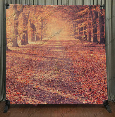 Autumn Road photo booth backdrop for your event.